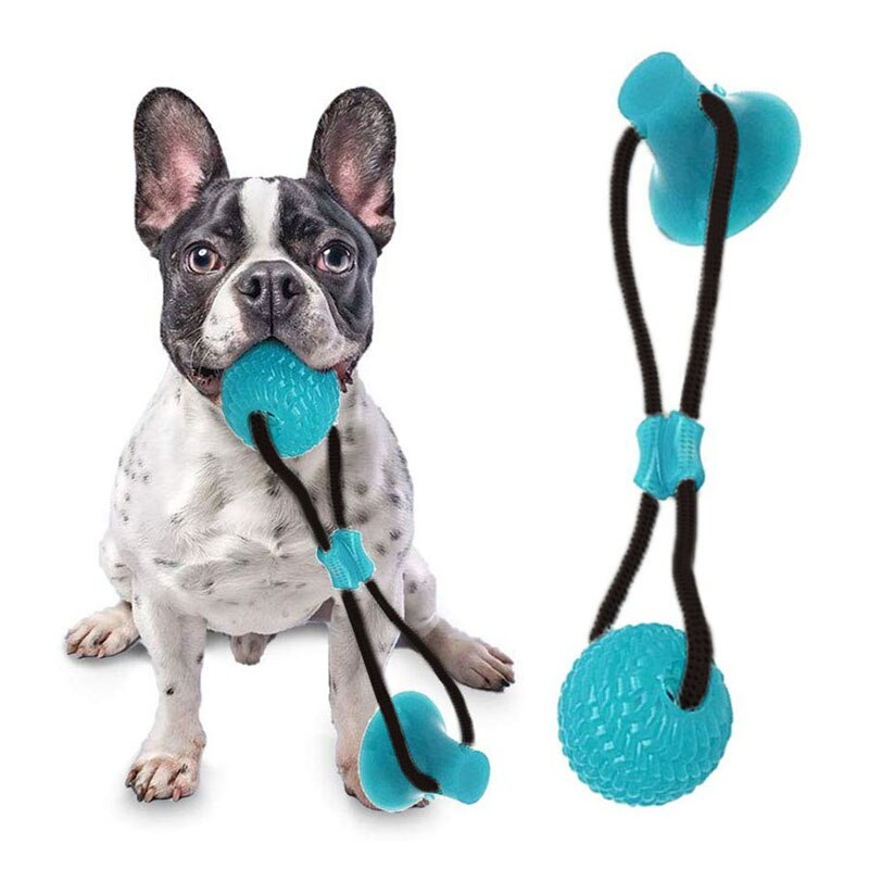 FLEXIBLE PET MOLAR BITE TOY - Store Zone-Online Shopping Store Melbourne Australia