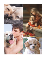 Load image into Gallery viewer, FIVE Custom Photos of YOUR PET on a Plush Fleece Blanket