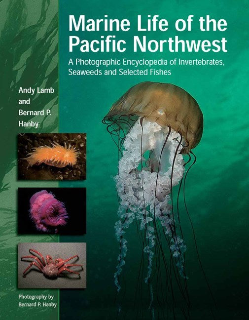 Marine Life of the Pacific Northwest : A Photographic Encyclopedia of Invertebrates, Seaweeds and Selected Fishes