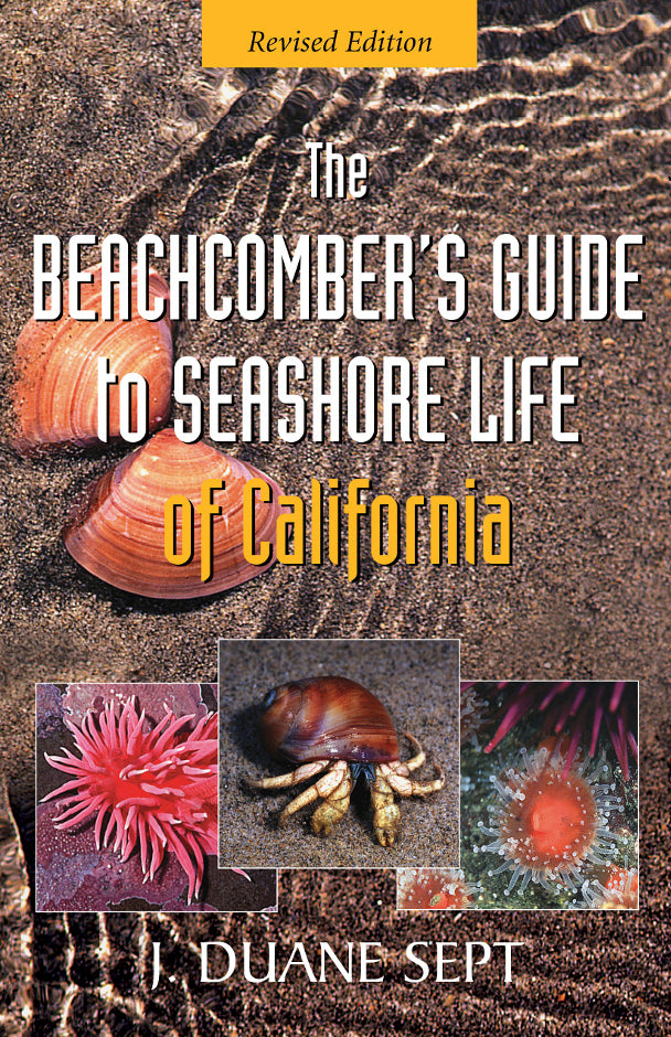 The Beachcomber's Guide to Seashore Life of California