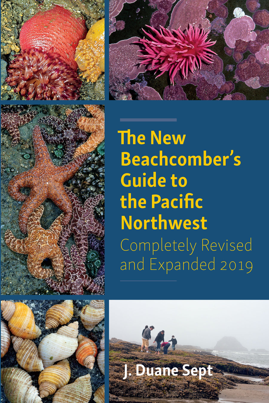 The New Beachcomber's Guide to the Pacific Northwest : Completely Revised and Expanded 2019