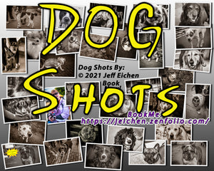 """Dog Shots"" A COVID-19 Safe Pet Photo Session"