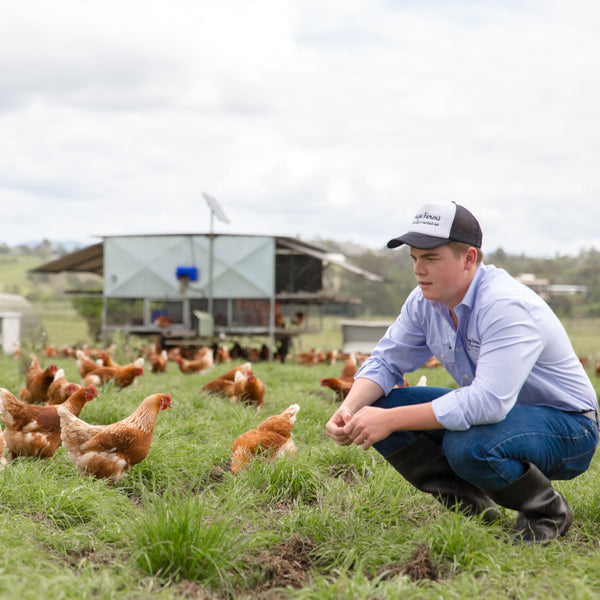 A third generation regenerative farmer in a paddock of pasture raised hens