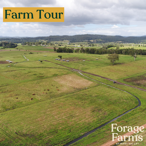 Farm Tour - Forage Gympie Region Event 22nd May