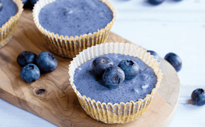 Blueberry Cheesecake Plant-Based