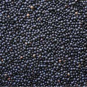 Black Lentils 16 oz - Natural Zing