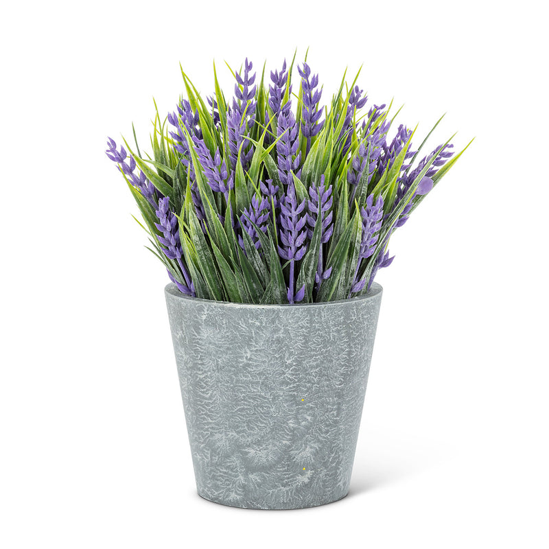 "Purple Lavender Plant Pot - 8"" H"