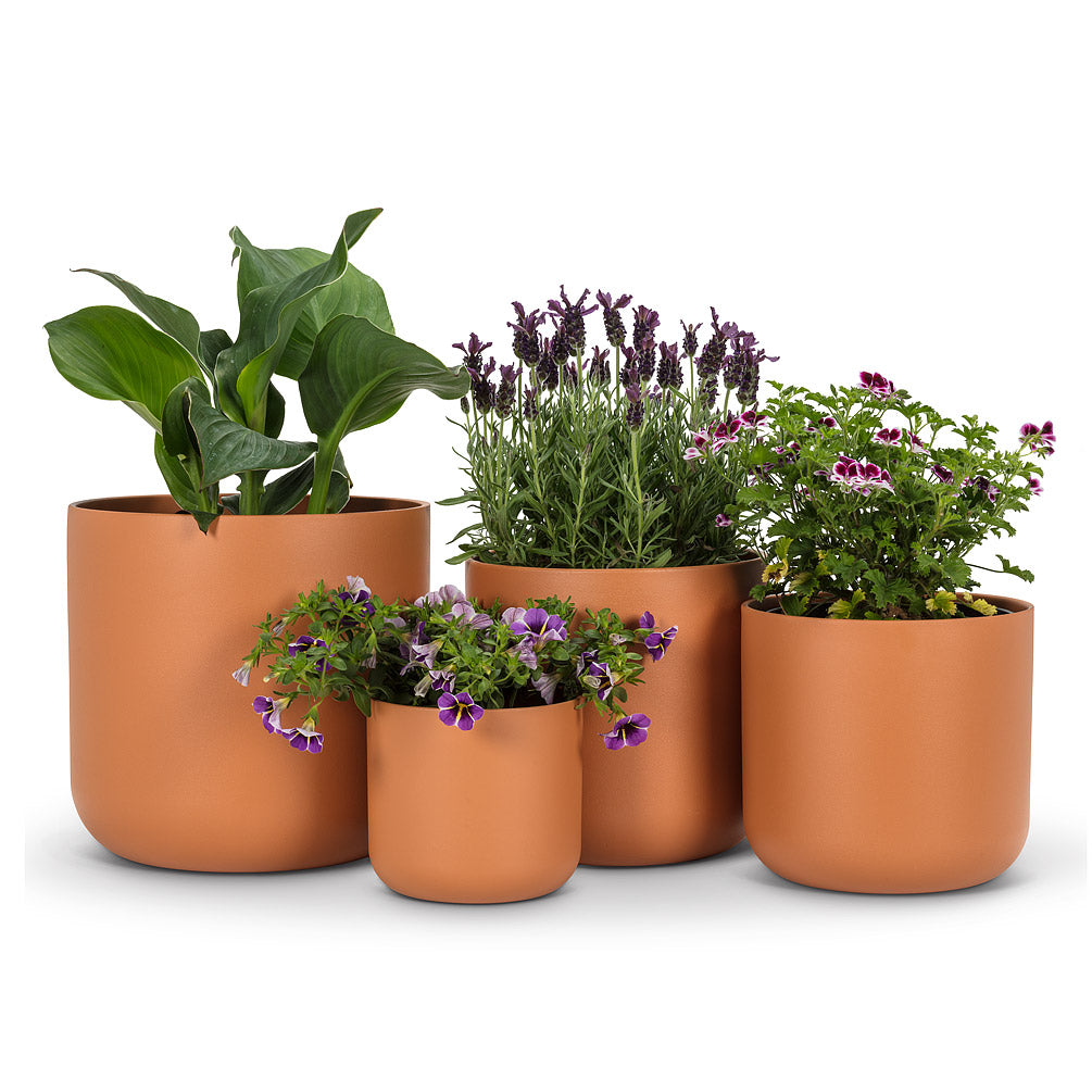 Medium Terracotta Classic Planter