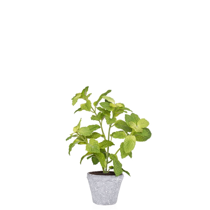 "Potted 10"" H Faux Mint Herb Plant"