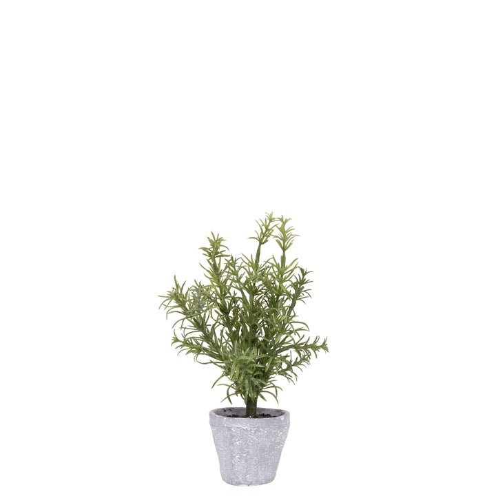 "Potted 10"" H Faux Rosemary Herb Plant"