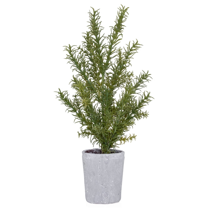 "Potted 18"" H Faux Rosemary Herb Plant"