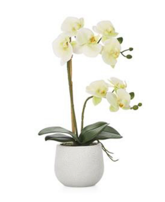 "Faux Potted Orchid 18"" (2 Stem)"