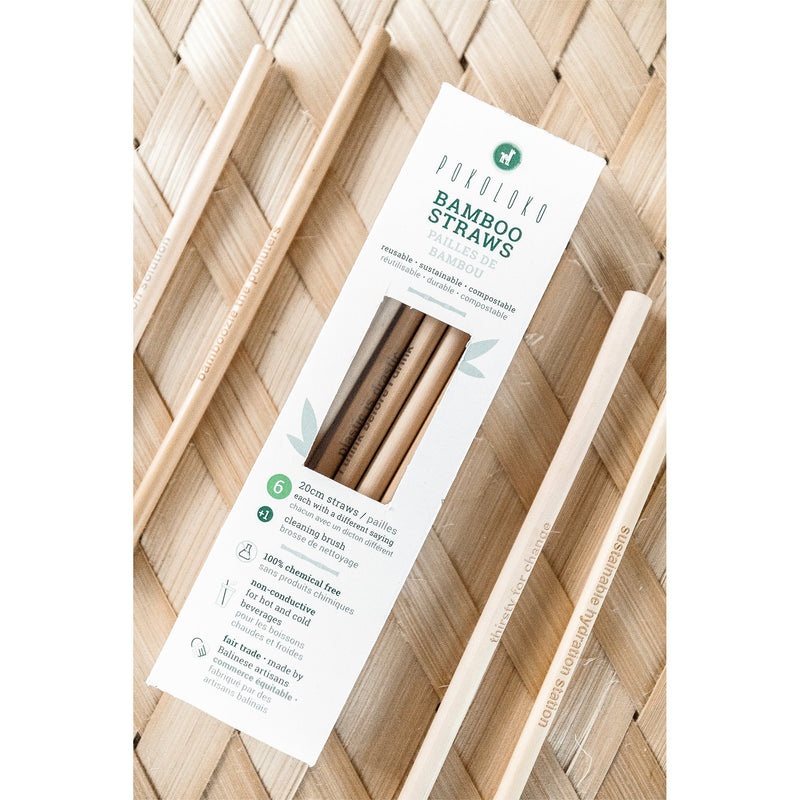 Bamboo Straws - Box of 6