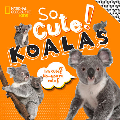 So Cute! Koalas
