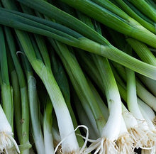 Load image into Gallery viewer, Scallion Parade - Vegetable Plant - 6pk