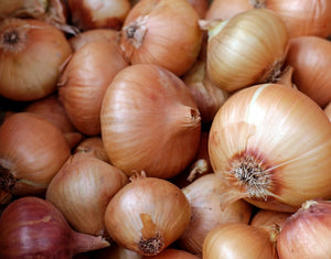 'Golden Gourmet' Shallot Sets - 250 g