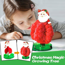 Load image into Gallery viewer, Magic Tree - Magical Growing Christmas Tree - PuraGlow