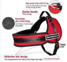 Load image into Gallery viewer, NEW All-In-One™ No Pull Dog Harness - PuraGlow