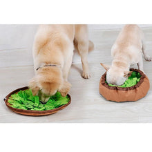 Load image into Gallery viewer, Snuffle Bowl Mat - PuraGlow