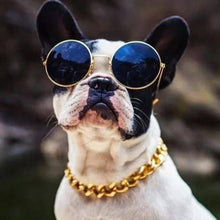 Load image into Gallery viewer, ThugPet - Thick Cuban Dog Gold Chain Pet Collar - PuraGlow