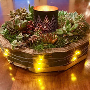 Holiday Wreath Planted with Lights