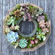 Wreath Frame Planter - Medium