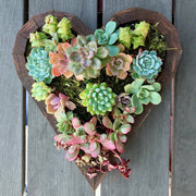 Heart Frame Planter - Medium
