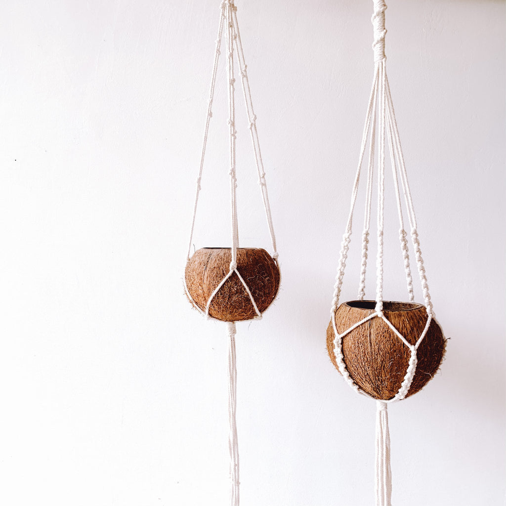 Coconut Plant Hanger - Set of 2 - Sasak Market