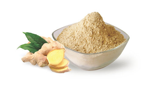 GINGER POWDER 100G