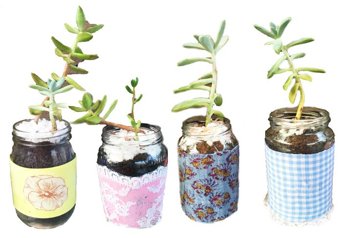 DIY Decorated Succulent Jars