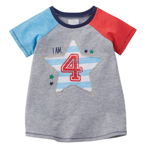 Boy 4 Birthday Shirt