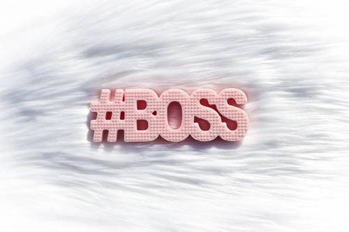 TEETHEWORDS - #BOSS Pink
