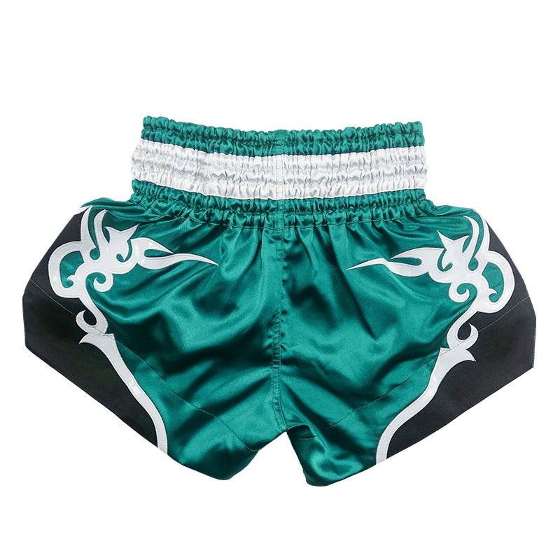 Wine Red/Lake Blue Fluory Fight Shorts