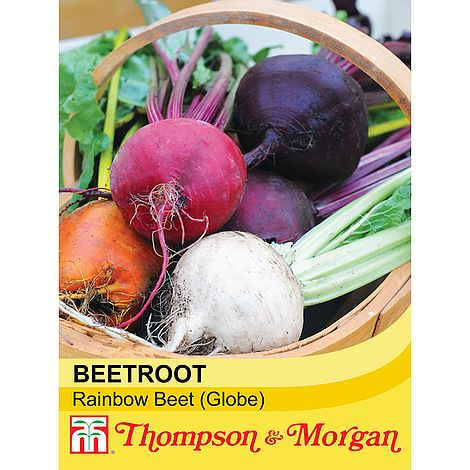 Beetroot 'Rainbow Beet' (Globe) Seeds