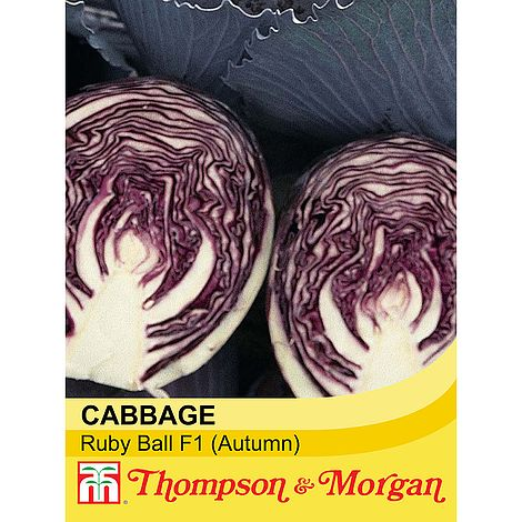 Cabbage Ruby Ball F1 Hybrid Seeds