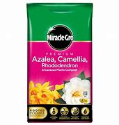 Miracle-Gro Azalea, Camellia, Rhododendron Ericaceous 10ltr