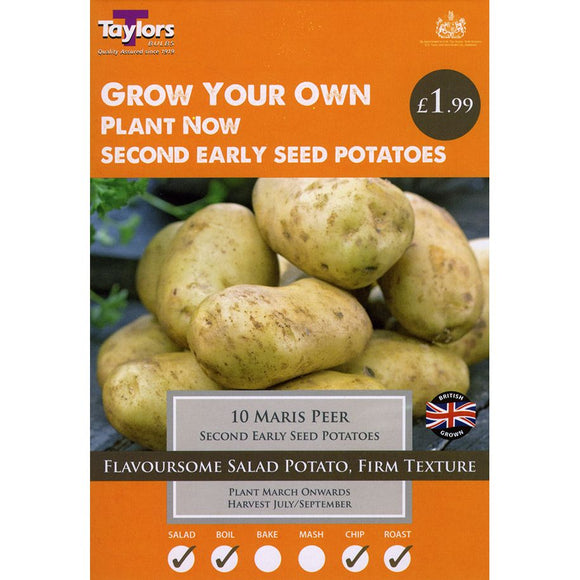 Maris Peer Seed Potato Second Earlies