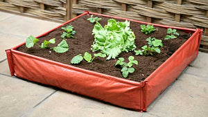 Haxnicks Instant Raised Bed