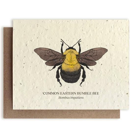 Plantable Seed Notecard, Bumble Bee