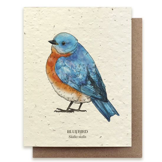 Plantable Seed Notecard, Bluebird