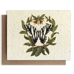 Plantable Seed Notecard, Butterfly & Paw Paw