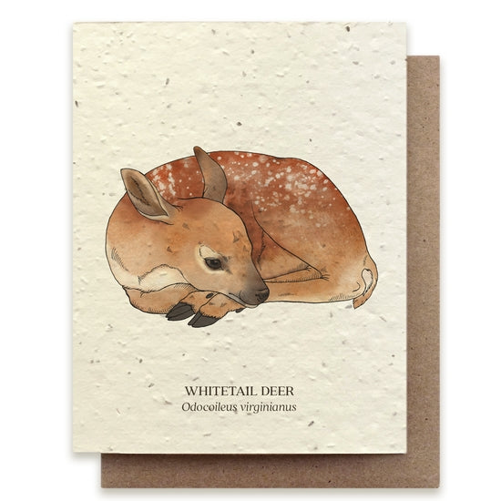 Plantable Seed Notecard, Deer
