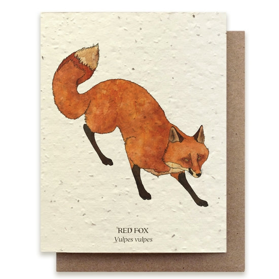 Plantable Seed Notecard, Fox