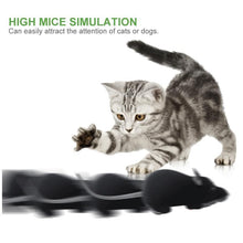 Load image into Gallery viewer, Remote Control Mouse Electric Cat Toy