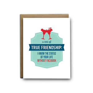 Status Without Facebook Friendship Greeting Card