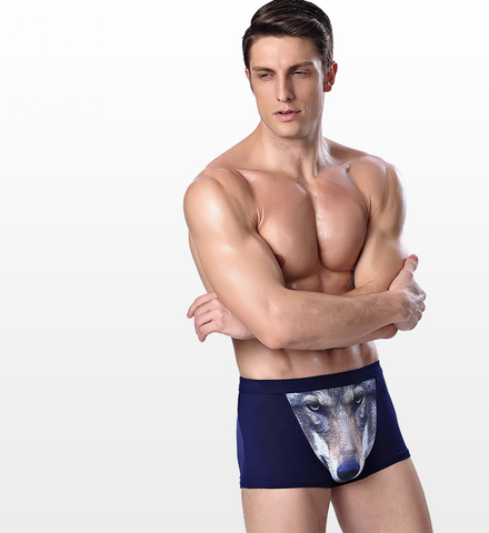 3D Wild & Passion Creative Underwear/4pcs