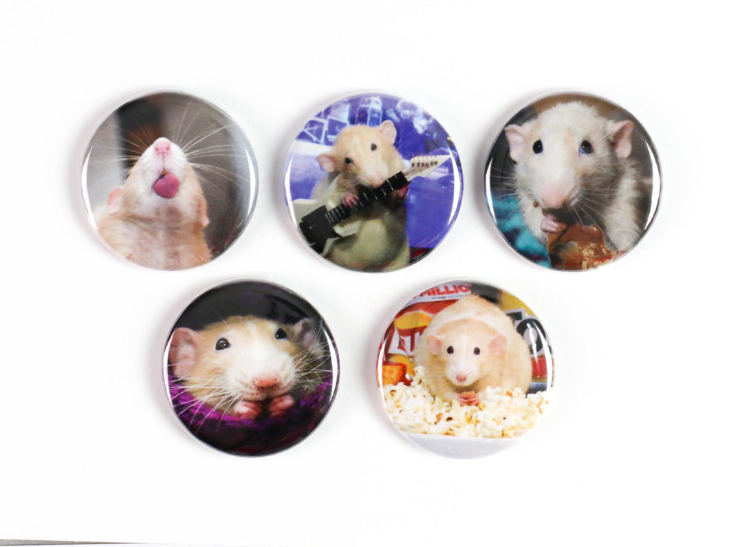 Cute Ratties! Pinback Buttons or Strong Ceramic Magnets