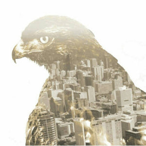 City Hawk Vinyl Sticker