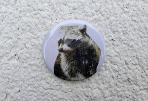 City Raccoon Pin Back Button