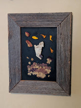 Load image into Gallery viewer, Mandible with amethyst and dried flowers framed shadowbox